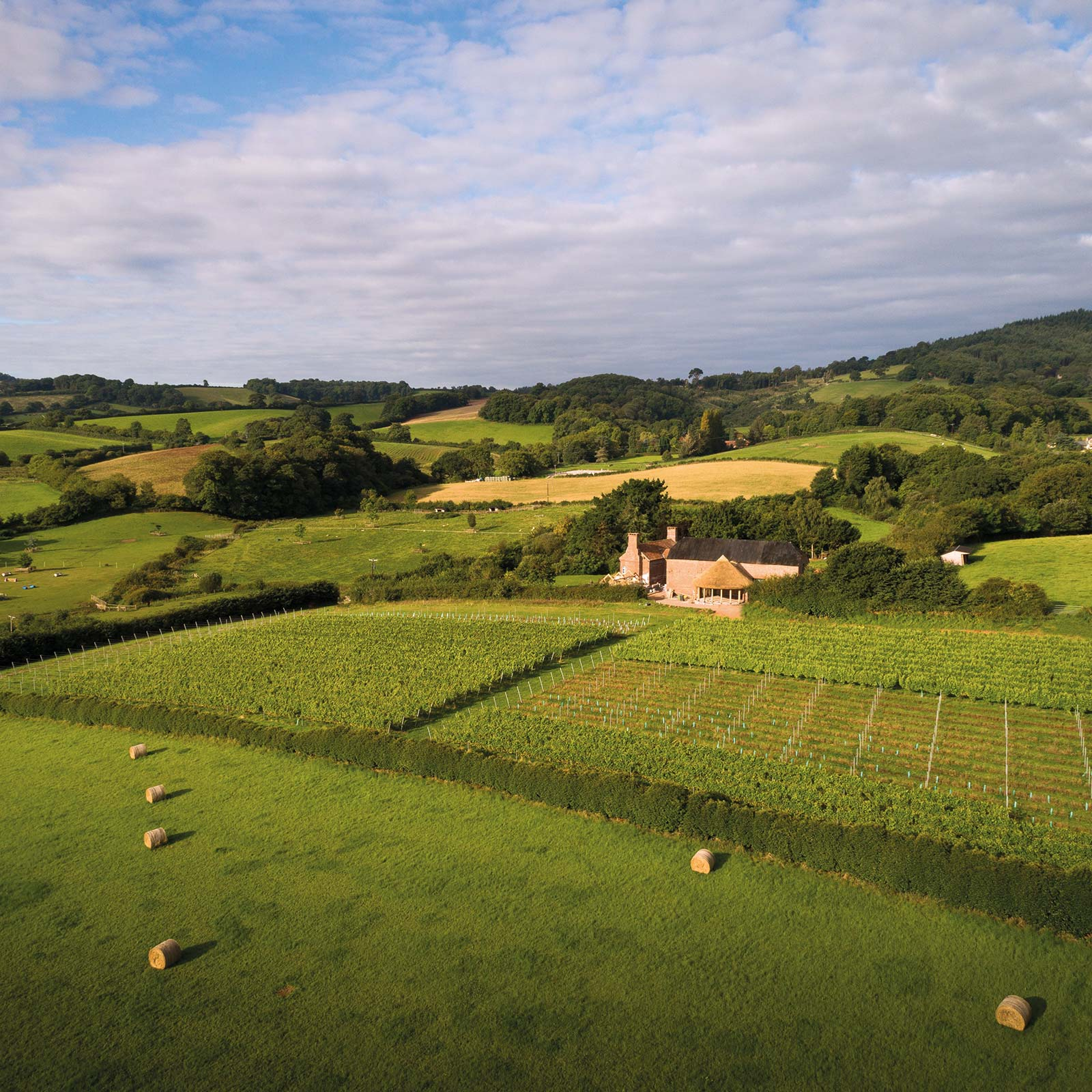 Arial view of Brickhouse Vineyard and round house in Devon, a rural venue for weddings and events.