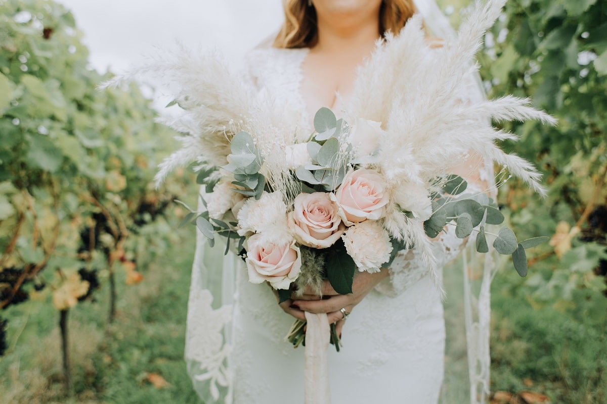 Bride holding bouquet between rows of vines