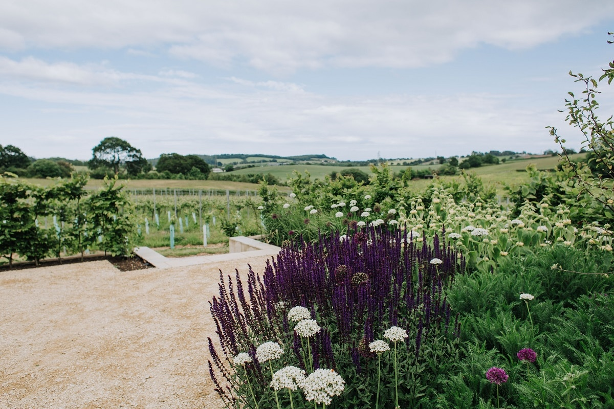 Beautiful garden at rural vineyard wedding venue