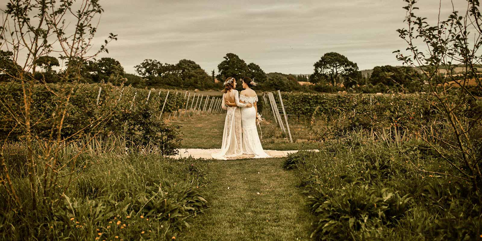 Couple overlooking the vineyard and countryside